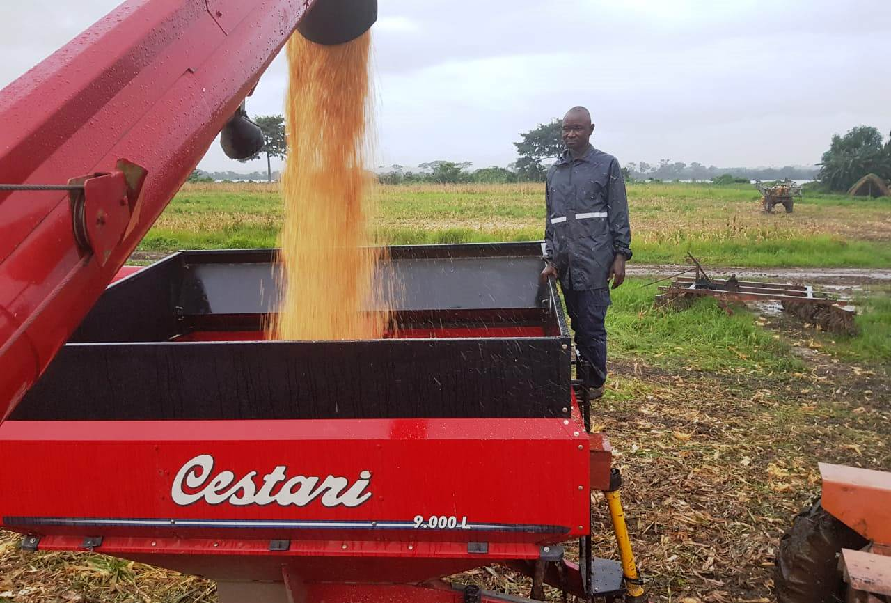 Cestari apuesta al desarrollo agrícola de África